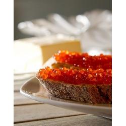 """7x 250 ml Täglich frisch kaltgepresstes Leinöl  """"Peterhof"""", kostenlose Lieferung"""